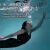 普利邦(PULEEBUMG)骨伝導ヘッドフォンBluetoothスポーツヘッドセットランニング無線は耳に傷がないです。8 Gのメモリを持って水泳します。ファーウェイのアイフォンはファッション的な英知黒です。